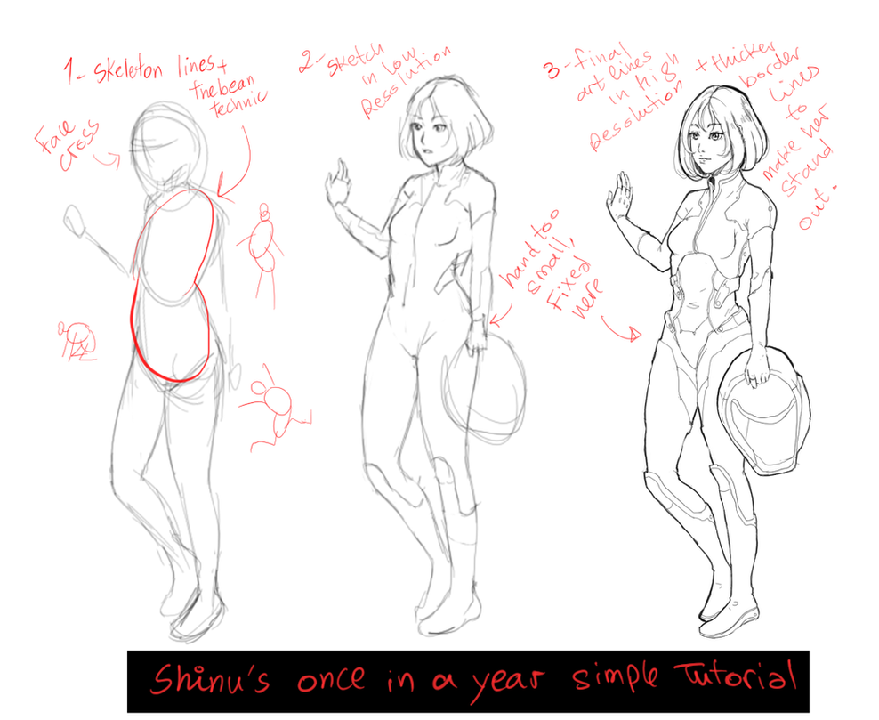 Anatomy Tutorial Drawing Choice Image - human body anatomy