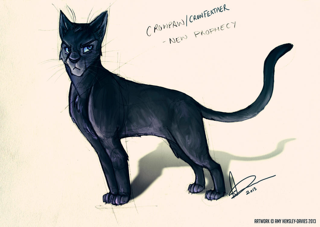 Warrior Cats Crowpaw