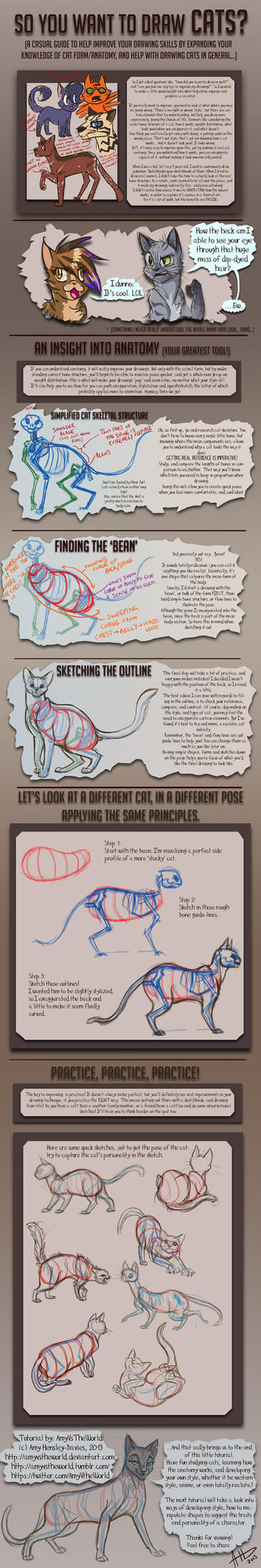 [Image: so_you_want_to_draw_cats__tutorial_by_am...60tqt3.jpg]