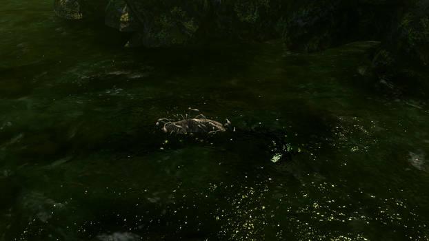 Gillieel Surfacing Sea Creature