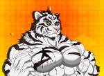 Pecs Tigers