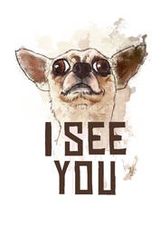 I see you - Funny Chiwawa