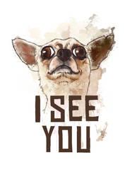 I see you - Funny Chiwawa
