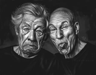 Good old friend: Ian Mckellen and Patrick Stewart by Thubakabra