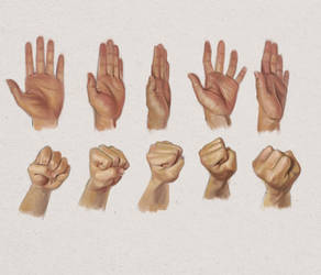 Hand Studies - Colored Digital Paintings of Hands by Thubakabra