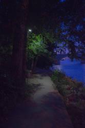 Follow the Night Trail by lyonsc1000