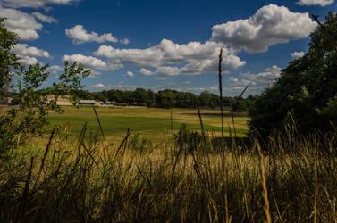 Through the Grass by lyonsc1000