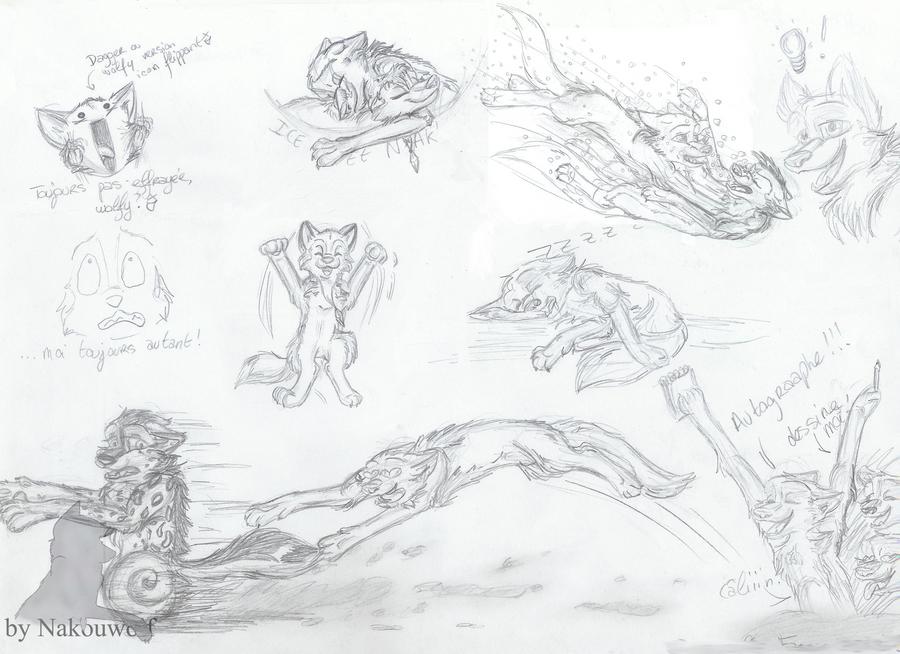 Sketch's 9 by Nakouwolf
