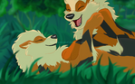 Can You Feel the (Arcanine) Love Tonight?