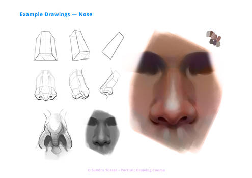 How to draw Noses [Course Excerpt]