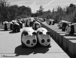1600 Panda WWF - 4
