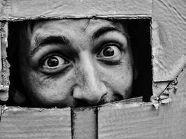 in the box by nicoella