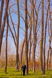 Man in Suit - Trees