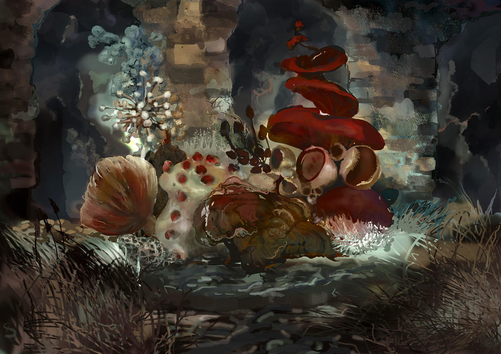 Fungus by AnnaSzy
