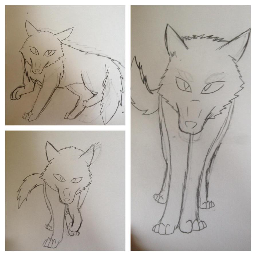 Wolf sketches by Darkshadowarts