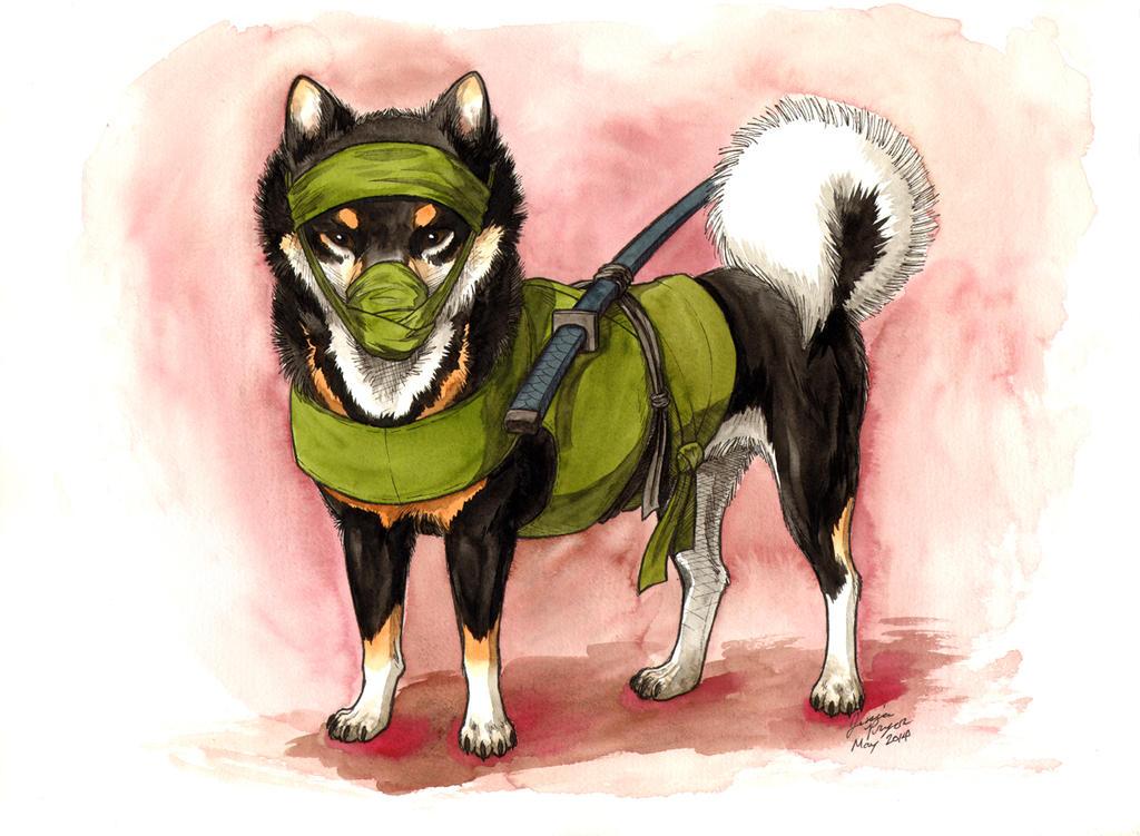 Shiba Ninja Green by jessielp89