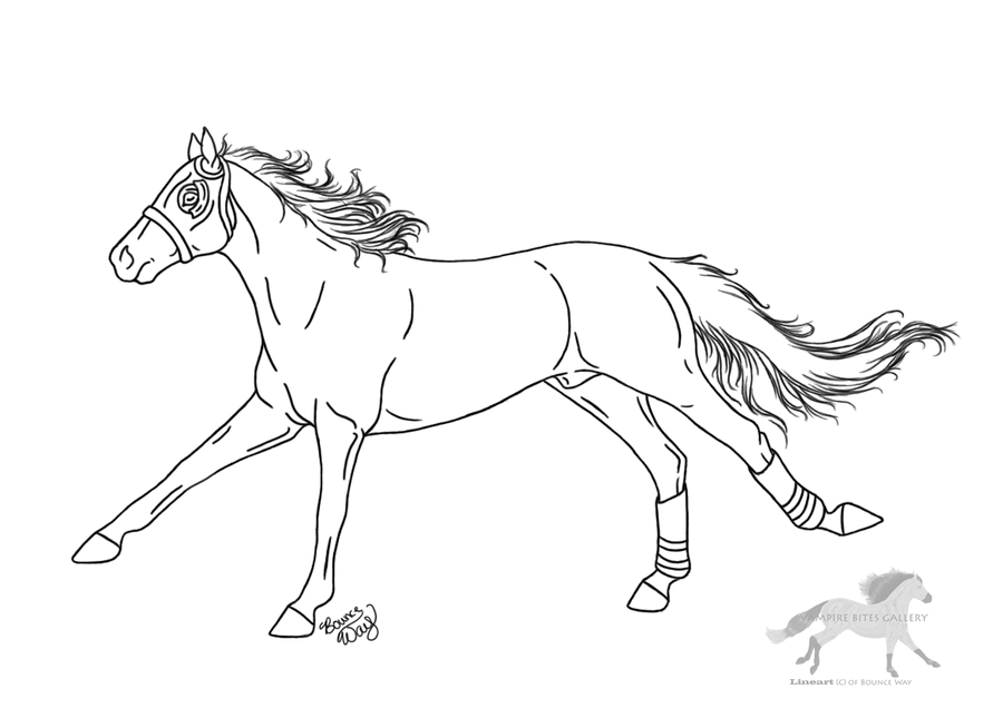 racehorse coloring pages image search results