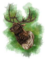 Elk by RejectAll-American