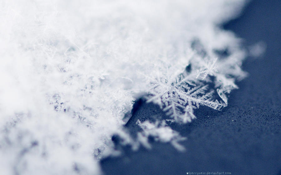 Snow Stars WP by Sophibelle