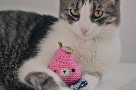 Coco and the Pink Pear