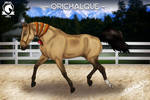 Orichalque IHS