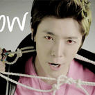 Donghae - Meow by Heedictated