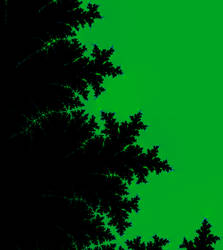 Midnight Leaves