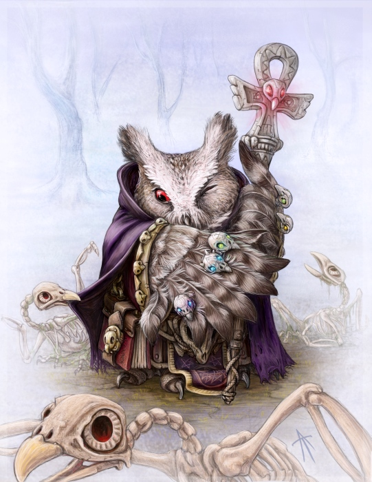 owl necromancer by napluvayka