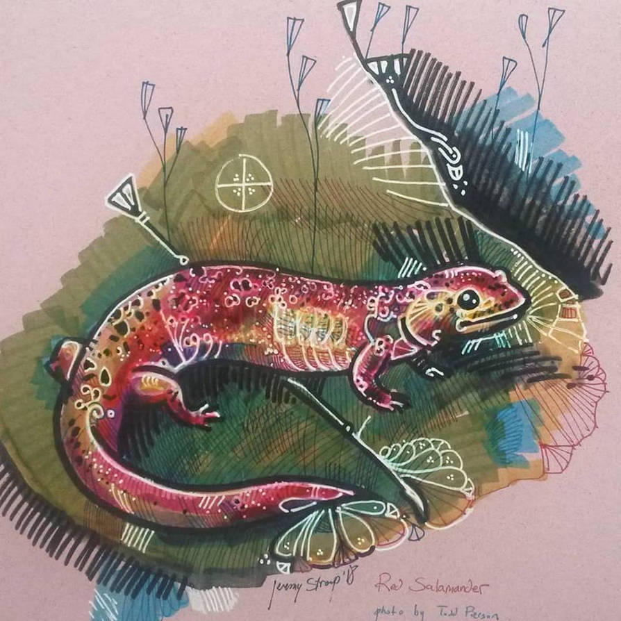 Red Salamander by matthias-corvidae