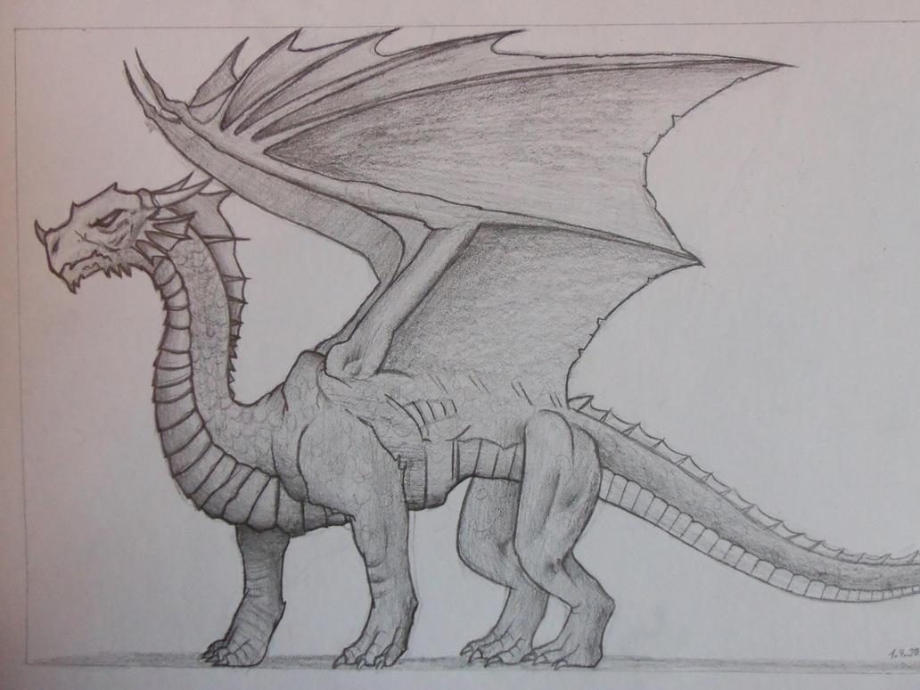 Dragon Drawing #1 By SpankyCZ ...