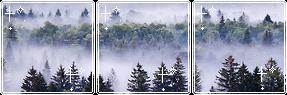 fogged pines II f2u by aisuu-chann