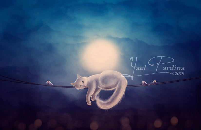 Dreams of flying by YaelPardina