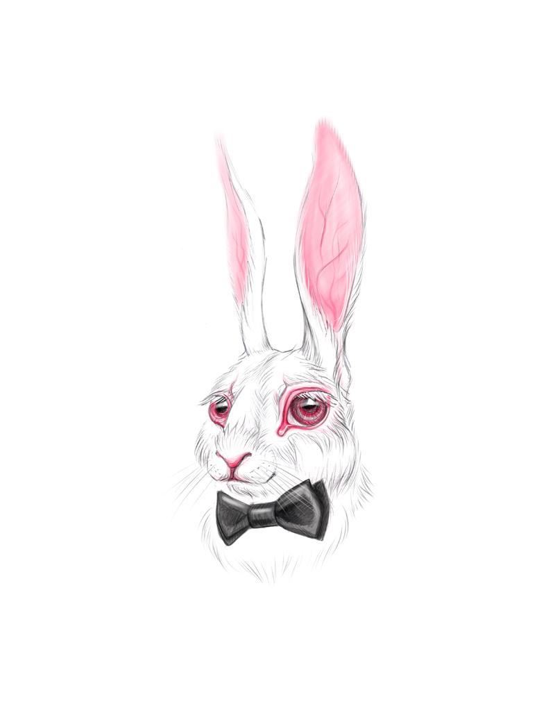 White Rabbit by vincvincit