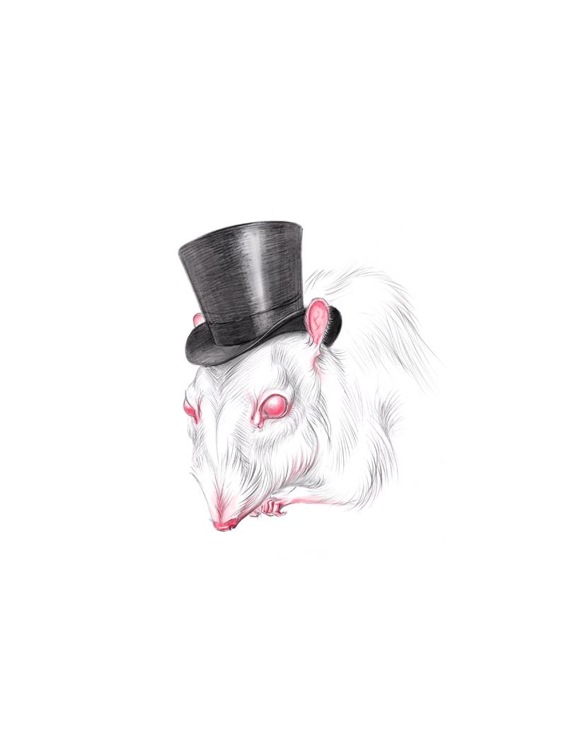 White Rat by vincvincit