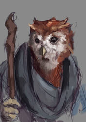 Sketch #161 Aarakocra Druid