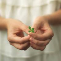 four-leaf clover by Czekoladowy-Lampir