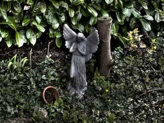The angel by raegar