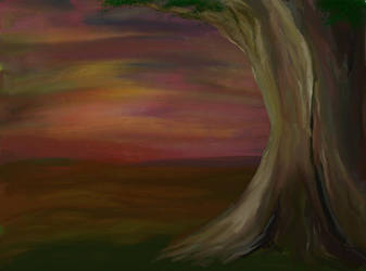 The lone tree in the evening by raegar
