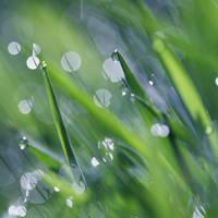 Sunshine through the rain by DivineInvention
