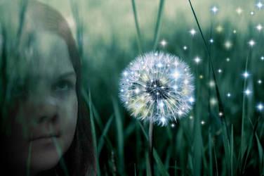 Theme 001: Dandelion Gleam by Dragonkuro