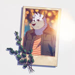 WINTERCORGIX Polaroid