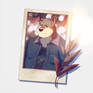 Grimm  Polaroid