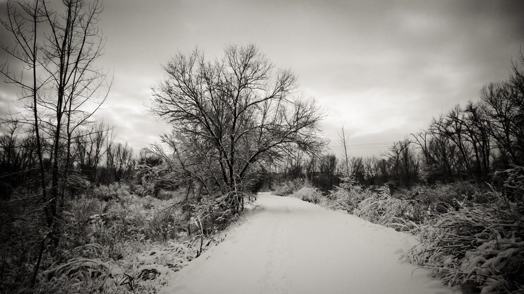 Parkway_Snow_by_DerHexenmeister.jpg
