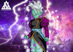 Novo Kaioshin Zamasu Dragon ball Super