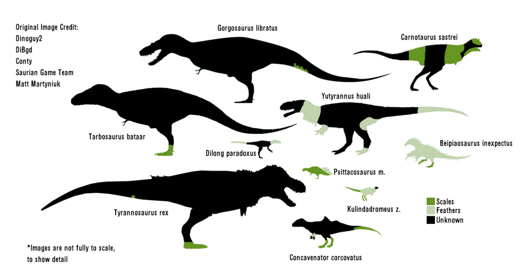 Dinosaur further File Human Staurikosaurus size  parison2 moreover Feathers Vs Scales 563710670 in addition Dilophosaurus Template 99226102 as well King Of Dinosaurs 147491993. on dilophosaurus pictures