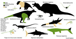 Feathers vs Scales vs Pycnofibres vs Skin