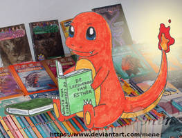 [Pokemon/Animorphs] Charmander reading on books