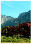 Engine and Nature by lona-green-butterfly