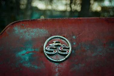 S S by FabulaPhoto