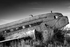 Flightless Sorrow by FabulaPhoto